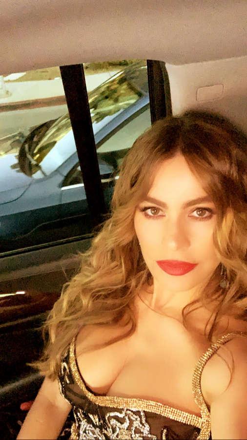 Sofia Vergara NSFW